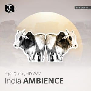 India Ambience
