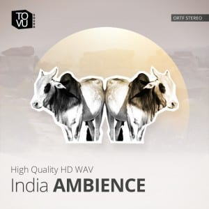 IndiaAmbience_1000-300x300