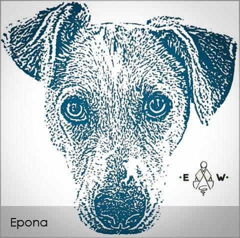 epona-grid