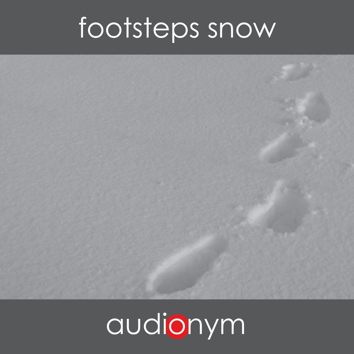 141210_footsteps_snow-Cover