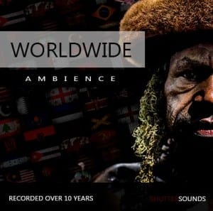 worldwide-ambience-grid