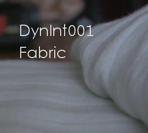 DynInt001_thumb