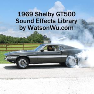 DSC_0420_69GT500Shelby_burnout_WatsonWu+Square+Text copy
