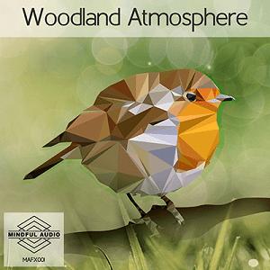 Woodland Atmosphere 300p Icon