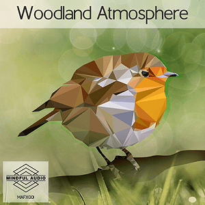 Woodland Atmosphere  300p Icon