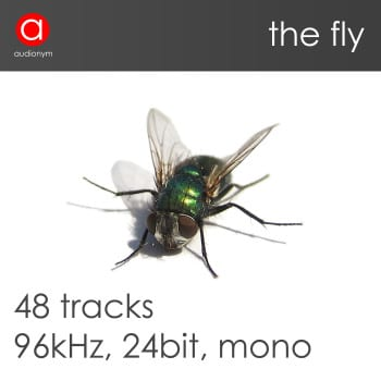 151124_Fly_Cover