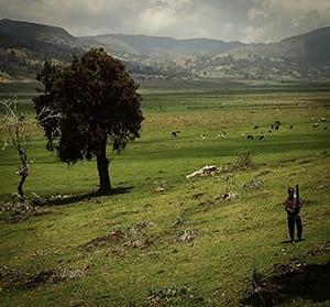 ETHIOPIA-sounds