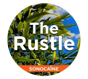 the_rustle_sonniss-1