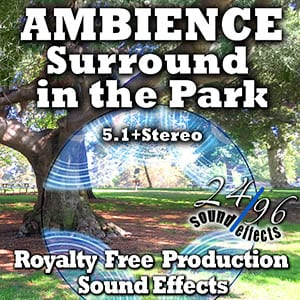 2496sfx_SurroundInTheParkSurround_GRID