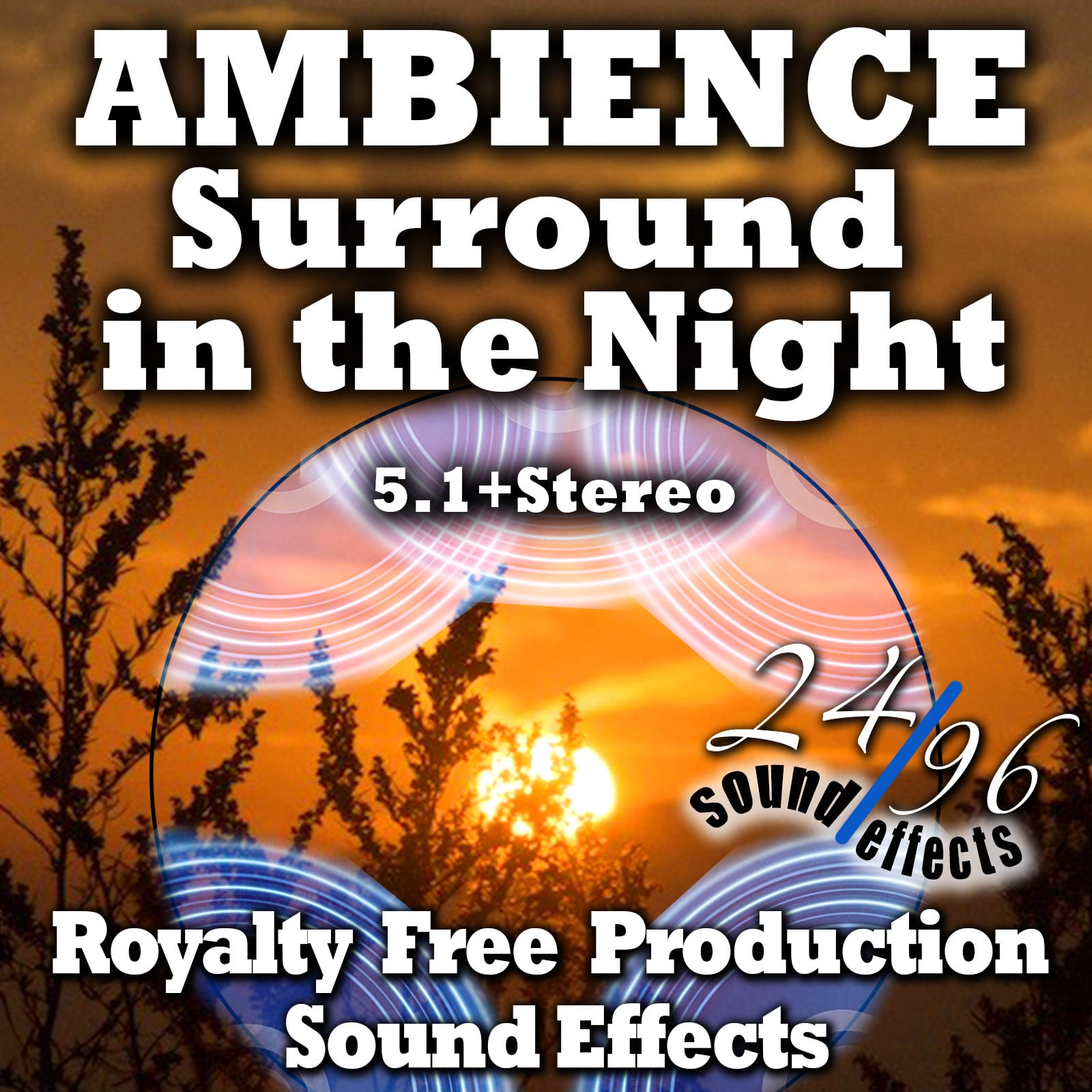 2496sfx_SurroundInTheNight5.1-FULL