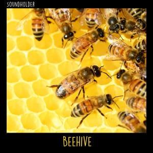 BeehiveASFX