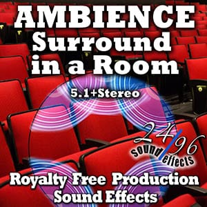 2496sfx_surroundinaroom-5-1-grid