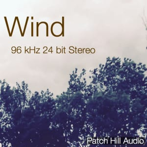 Wind_PatchHillAudio_CoverArtwork-300x300
