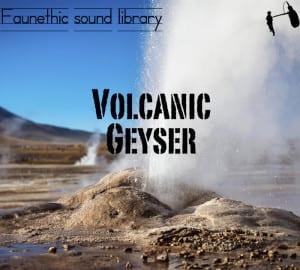 GeyserLarge-300x270
