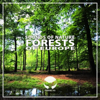 Sounds of Nature: FORESTS of Europe